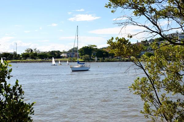 Sailing Hamilton reach of Brisbane River