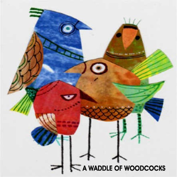 A WADDLE OF WOODCOCKS
