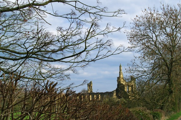 Byland Abbey from the Oldstead Road