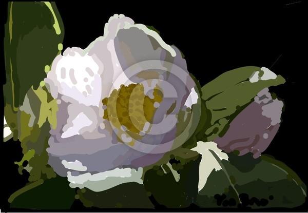 floradig9