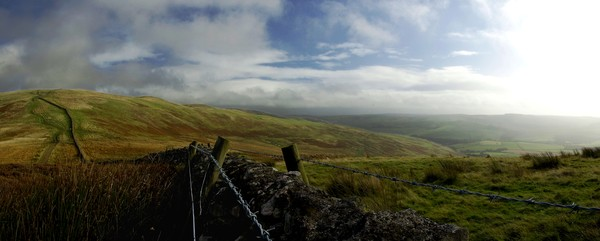 Dyke and fence at Witchie Knowe