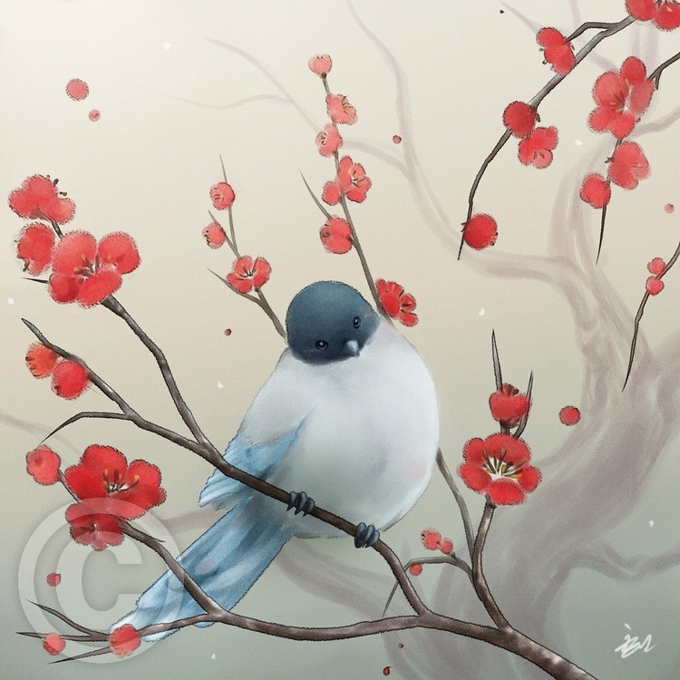 Little Bird and The Plum Blossoms