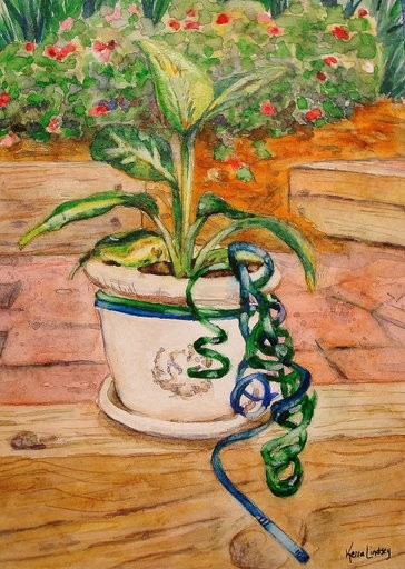 Potted Plant Gift Card Watercolor