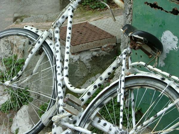 Bicycle: Cinque Terre, Italy