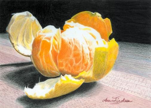 Clementine - January VSD