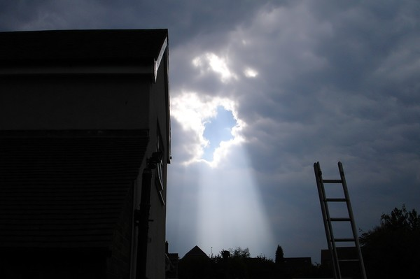 THE LADDER AND THE LIGHT