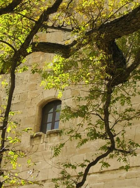 Kolossi window