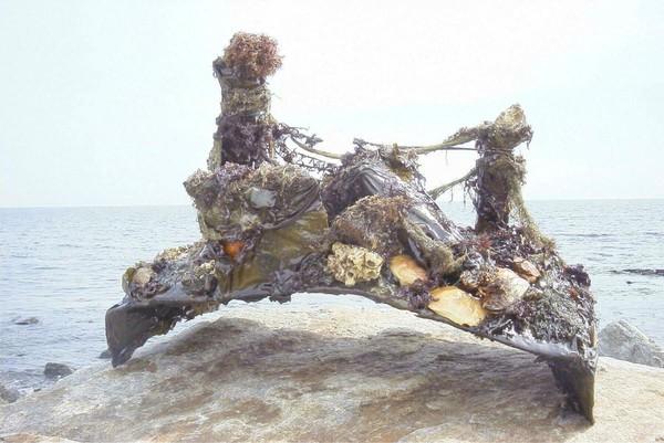 Art Of The Ocean #1