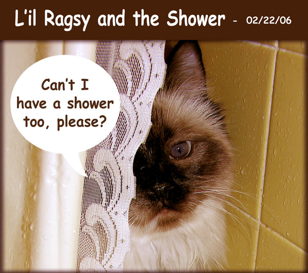 L'il Ragsy and the Shower