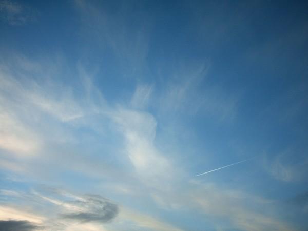ANGEL NOV SKY2