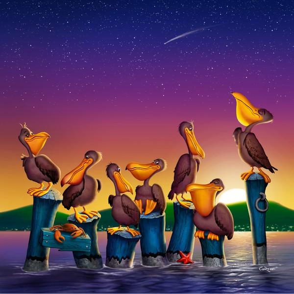 Pelican Sunset - Square Format