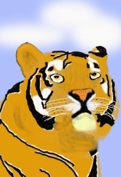 O416 Bengal Tiger