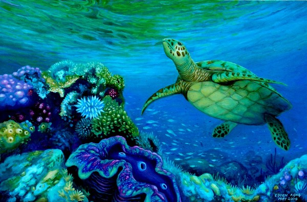 Green turtle and Giant Clam