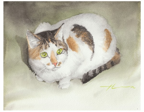 calico kitty watercolor painting