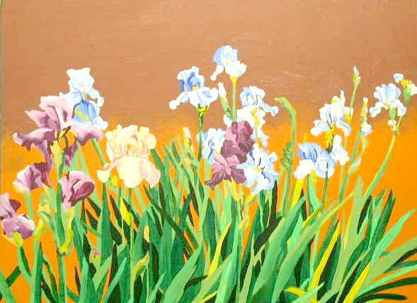 Group of Iris
