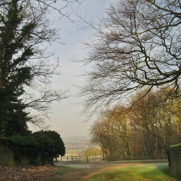 Church Lane, Harewood 2