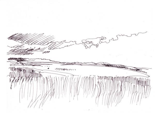 Fiord road