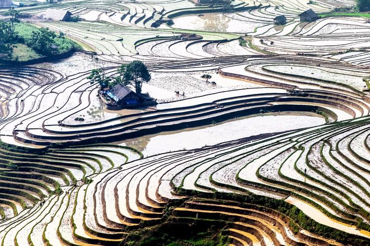Ethnic Farmers' Terraces in Plowing season
