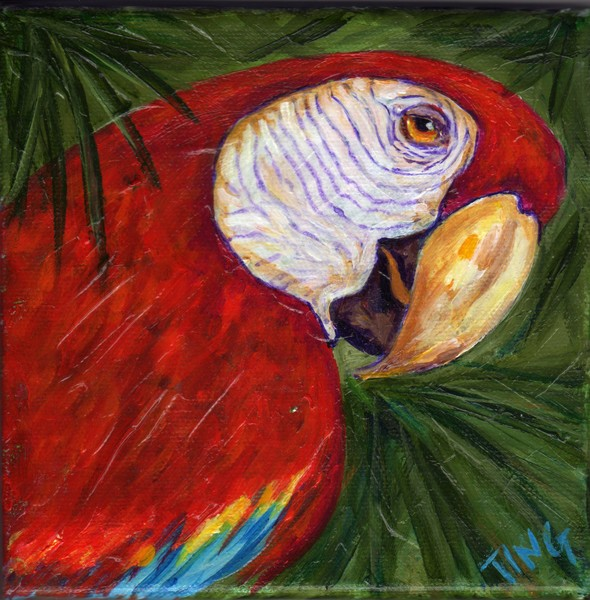 Macaw Print from original painting