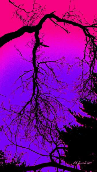 Night Sky Fuschia