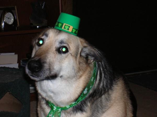 Kiss Me... Umm, I'm Irish?