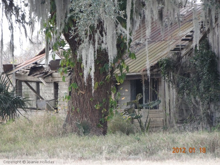 THIS OLD HOUSE- PHOTO
