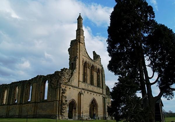 Byland Abbey 2