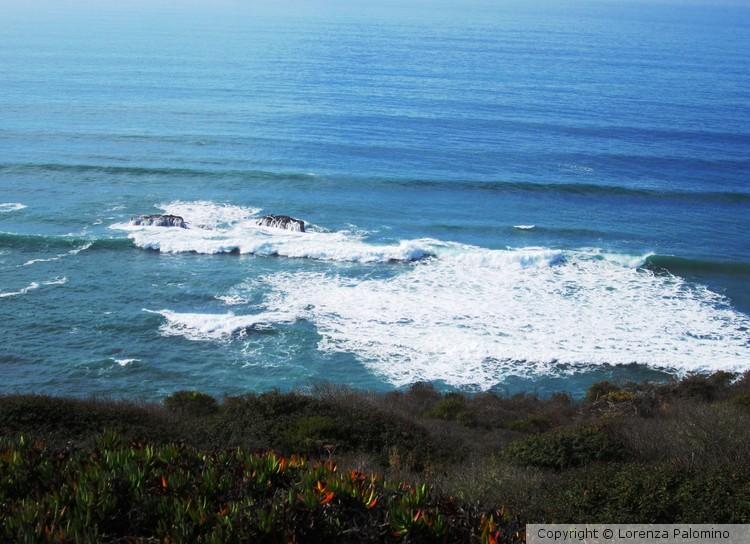All Ocean