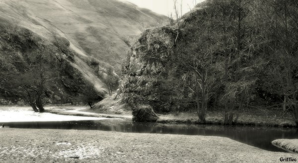 DOVEDALE # 3