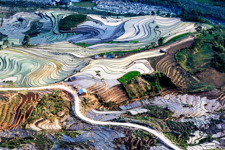 Beauty of rice terraces