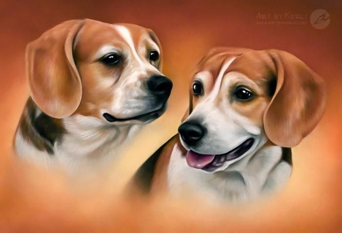 Bailey & Cody