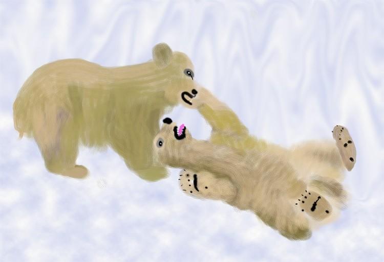 Young Polar Fight O838