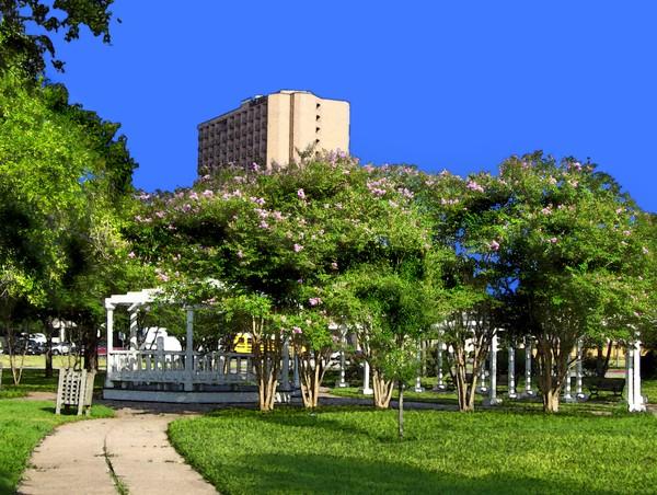 Artesian Park