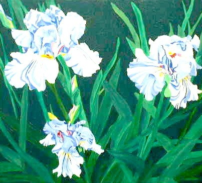 (Blue) Iris Group