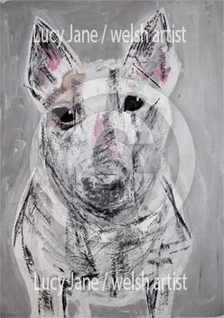 The British Bull Terrier