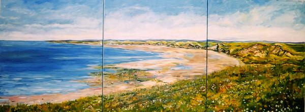 Ireland Seashore
