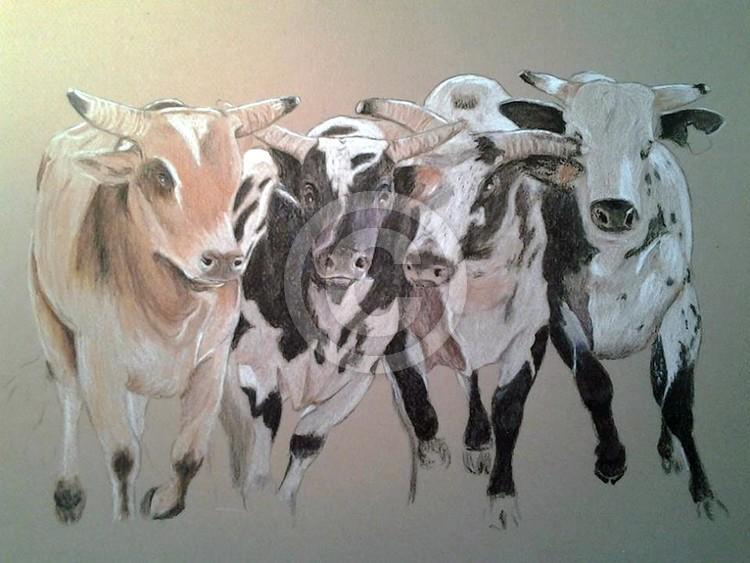 Bull Mania