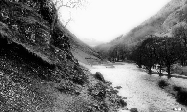 DOVEDALE # 2