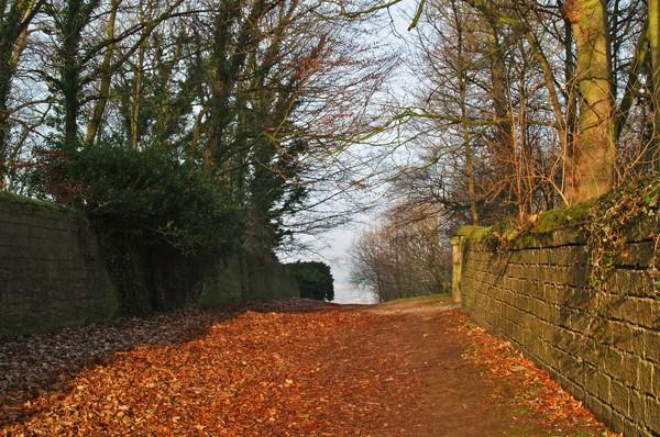 Church Lane, Harewood