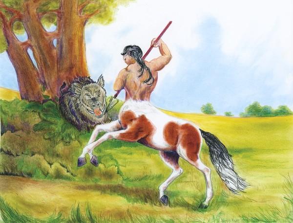 Pinto Centaur