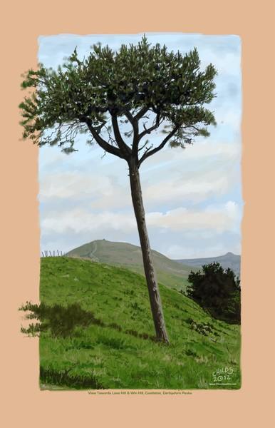 Castleton Tree