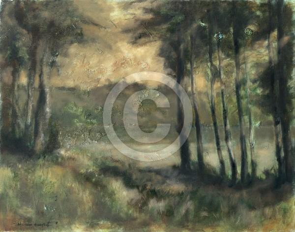 Eindruck 45x35 oil on canvas