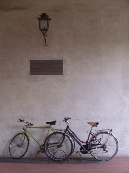 A Tale of Two Bicycles