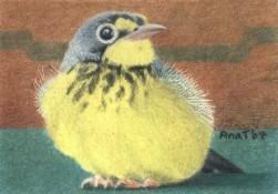 Happy Birdie - ACEO