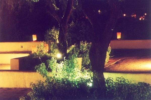 Night Scene 3