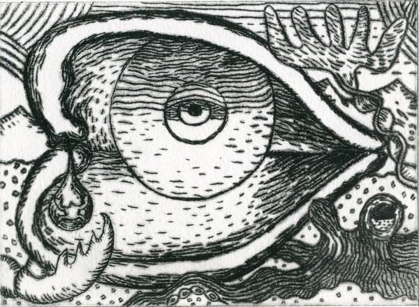 Die Evolution der Träne-The Evolution of the Tear