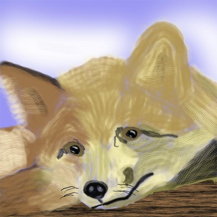 Lazy Fox  O863