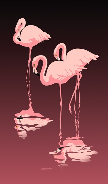 Three Flamingos - Custom Phone Case Art