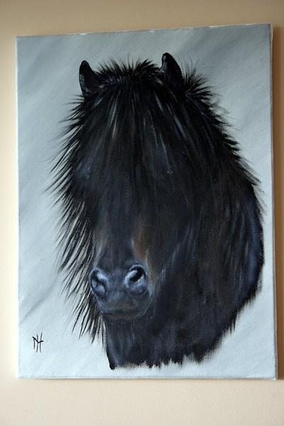Harry Potter (Horse) Portrait