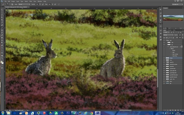 the Dales - close up of hares